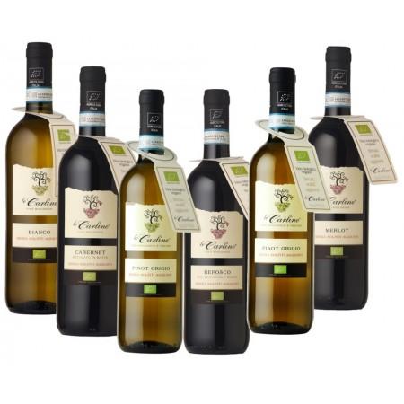 Selezione vini senza solfiti aggiunti